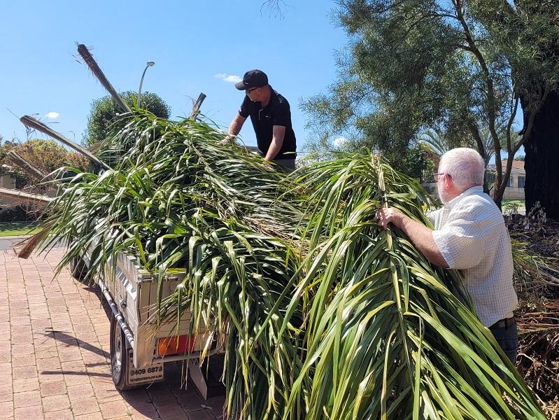 Palms Truck
